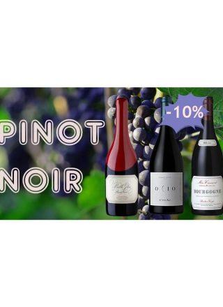 pinot-noir-aroma-profile-grape-variety-wine-social-vignerons
